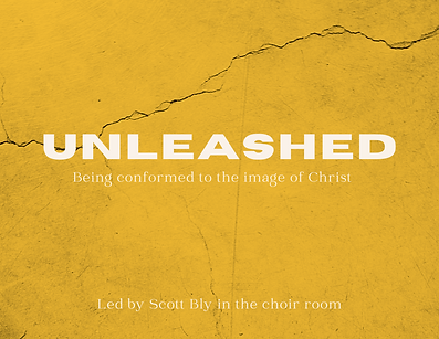 Unleashed (3).png