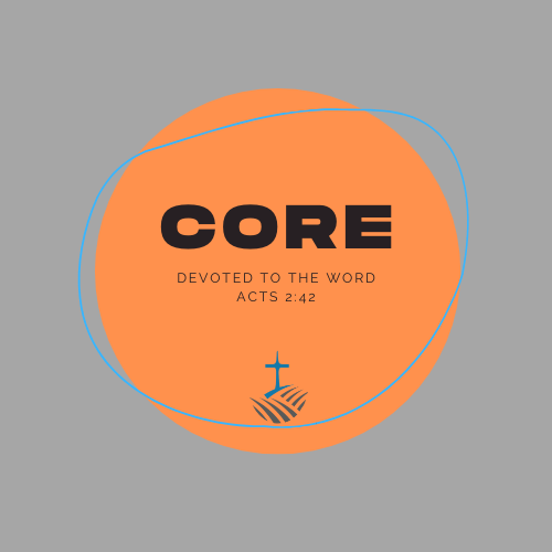 core gray png.png
