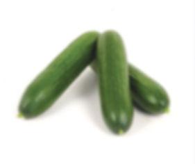 concombre mini.jpg