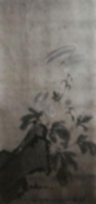 180709_菊図_4.jpg