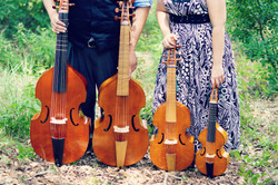 Viols in a Row