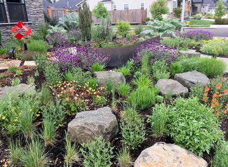 3 Principles of Garden Design I Learned as a Kid