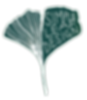 simpleleaf11_edited.png