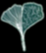 simpleleaf11_edited.png