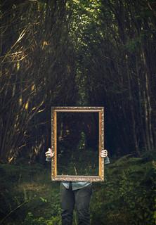 Fine Art - See Through