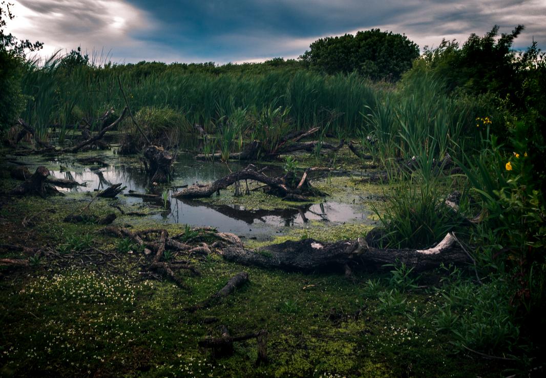 Landscape Photography - Jamie Denny Photography
