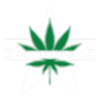 Starbuds_Logo_White_Green-05.png