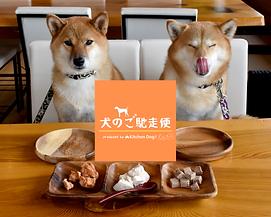 犬 の ご馳走便 ヒーロー画像 .png