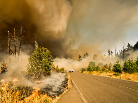 Preventing Catastrophic Wildfire Under Climate Change