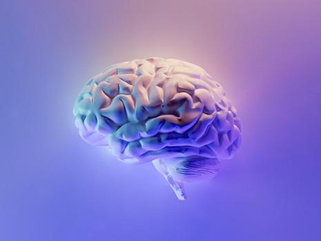 Establish a $100M National Lab of Neurotechnology for Brain Moonshots