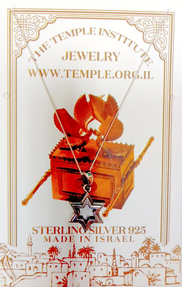 The Temple Institute brand Jewelry   10