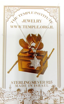 The Temple Institute brand Jewelry   12