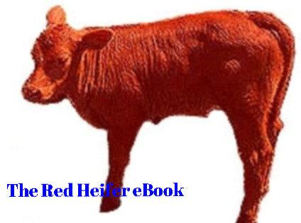The Red Heifer eBook