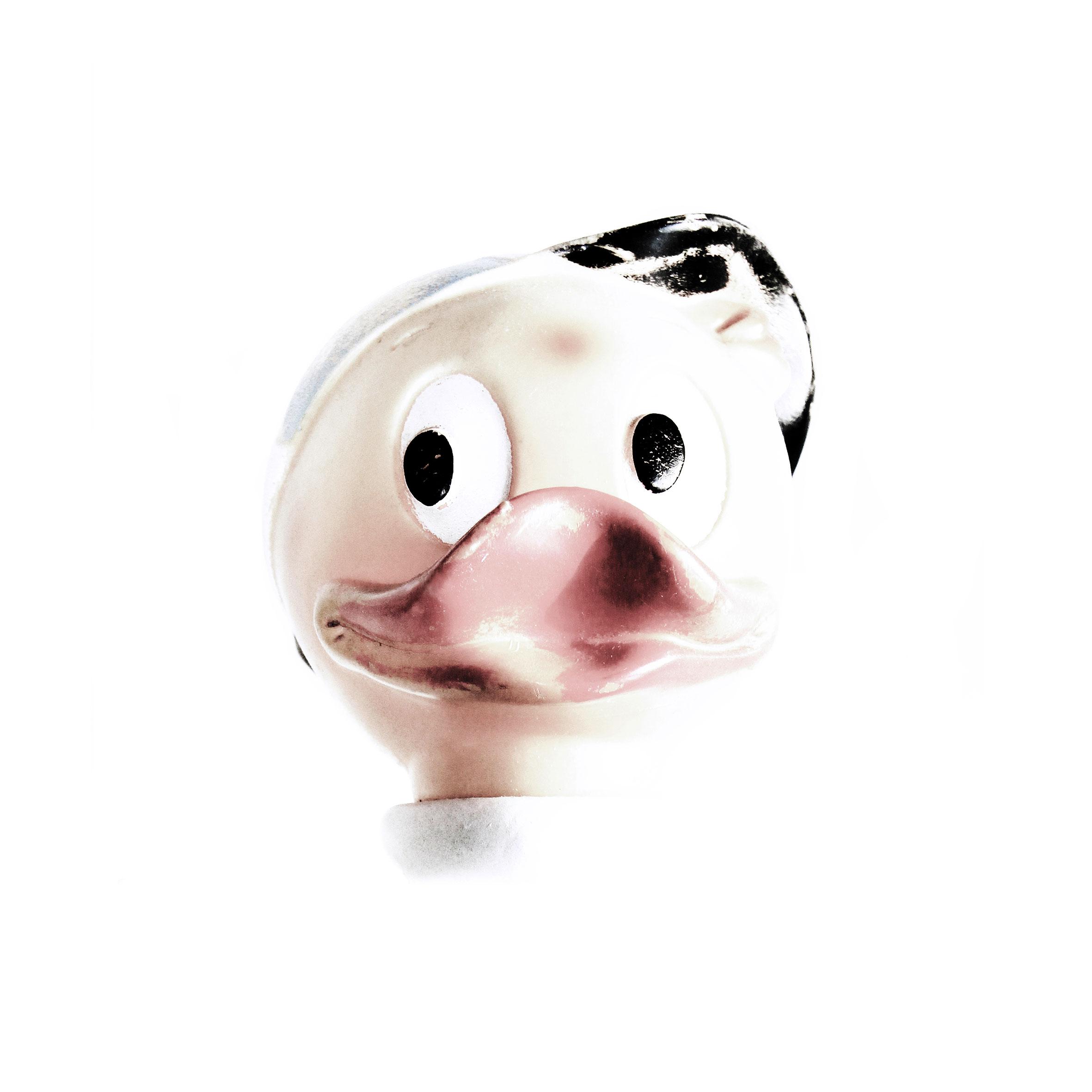 Duck Junior 2