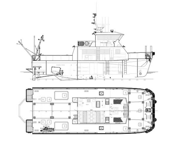 rodman-65