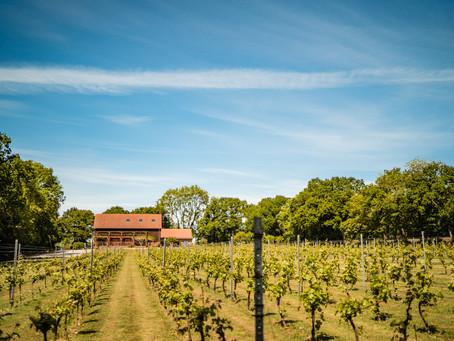 Froginwell Vineyard - Wedding Venue Profile