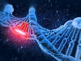 L'intérêt d'investir dans la recherche sur les maladies rares!
