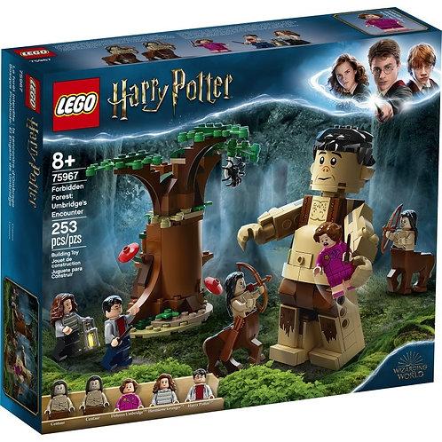 LEGO Harry Potter 75967 Întâlnirea lui Grawp cu Umbridge /Грохх и Долорес Амбрид
