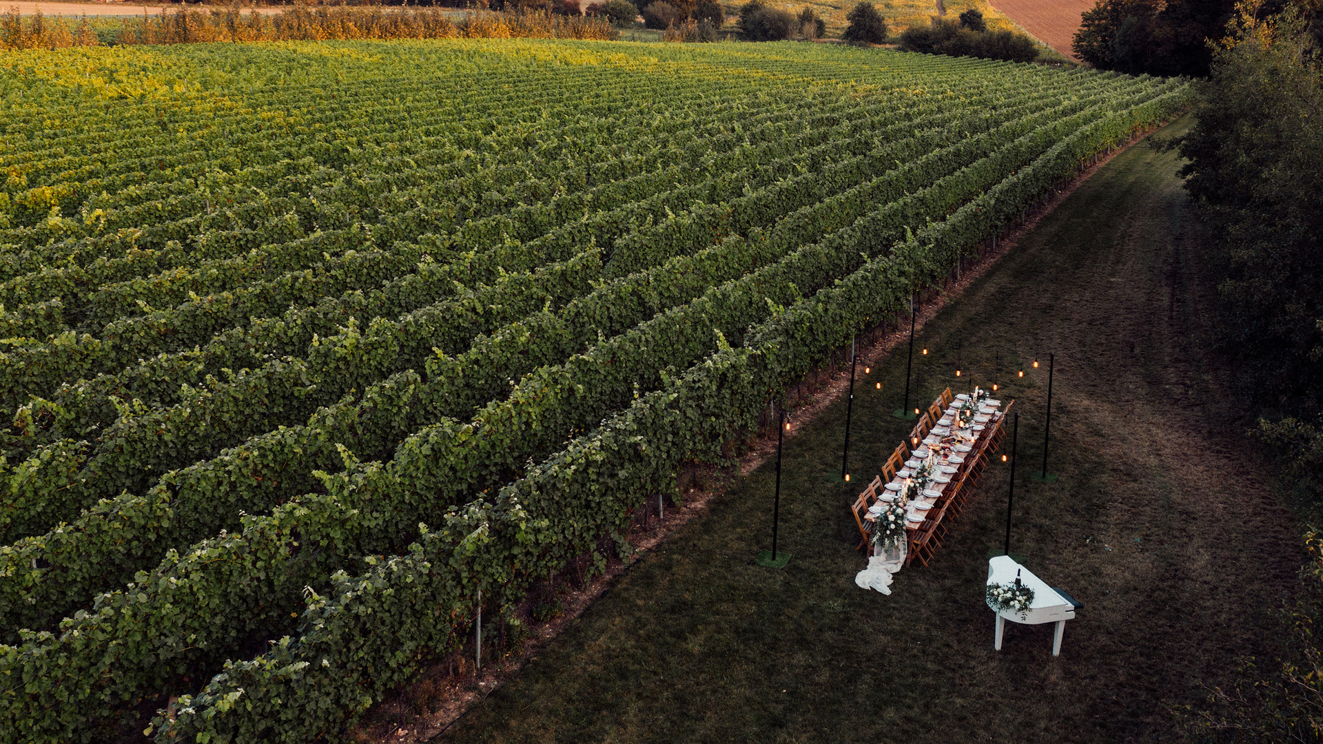 Intimate Vineyard Tablescape