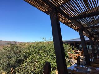 Honeymoon Ideas - South African Safari.