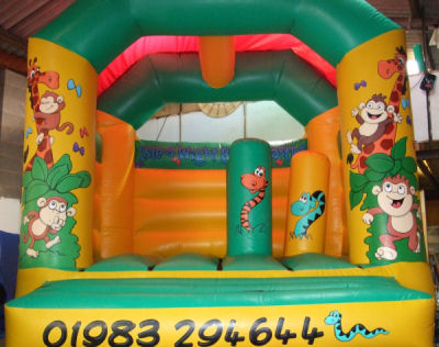 Jungle Activity Bouncer