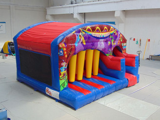 Circus Play n Slide
