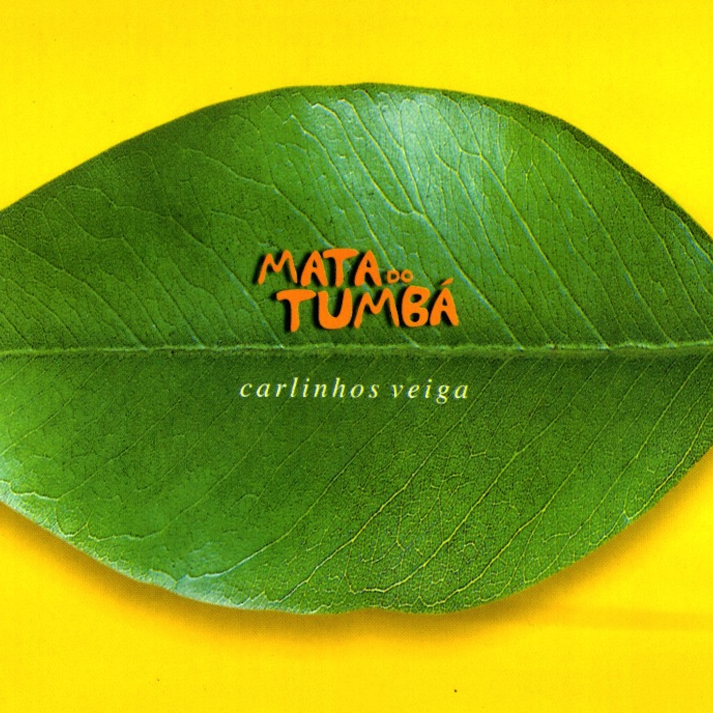MATA DO TUMBÁ (2002)