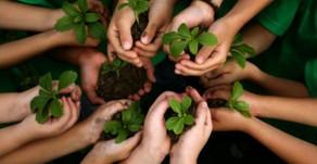 Wherever garden grow, kids grow too!