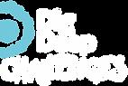 Dig Deep Challenges Logo-01.png