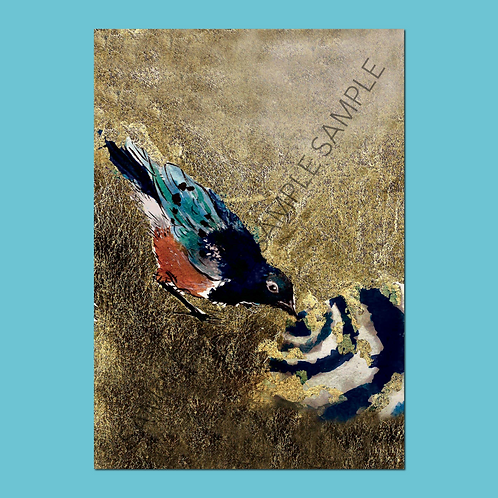 Superb Starling Christmas Cards