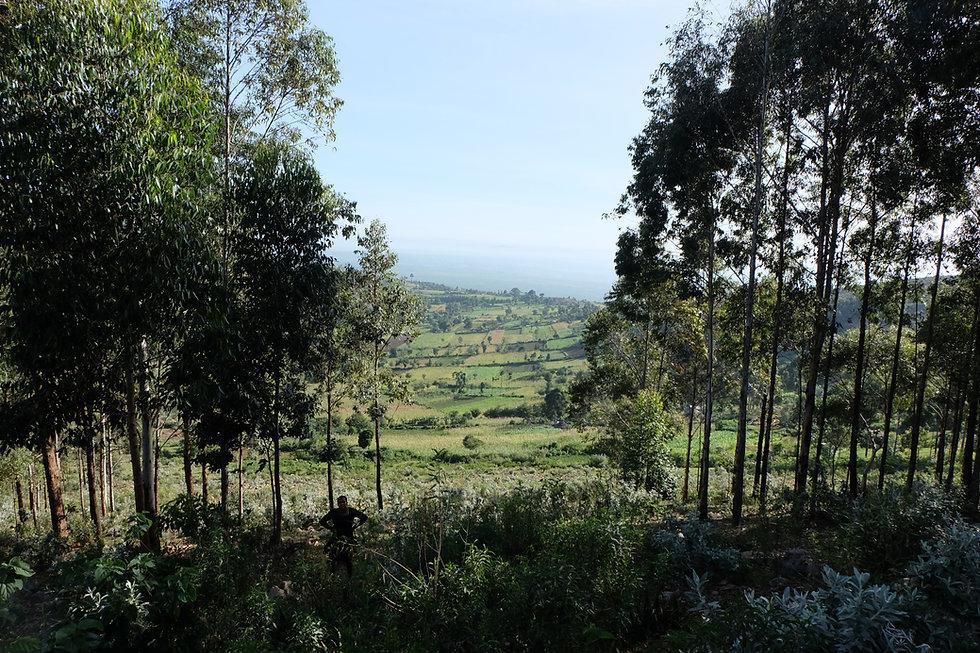 Kenya2019 - 185 (1).jpg