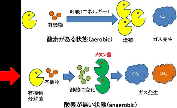 メタン発酵の原理