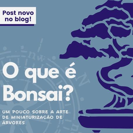 O que é Bonsai? Um pouco sobre a arte de miniaturização de árvores.