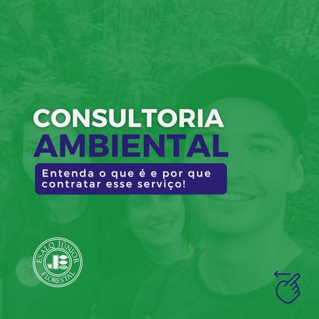 Consultoria ambiental: o que é e por que contratar esse serviço