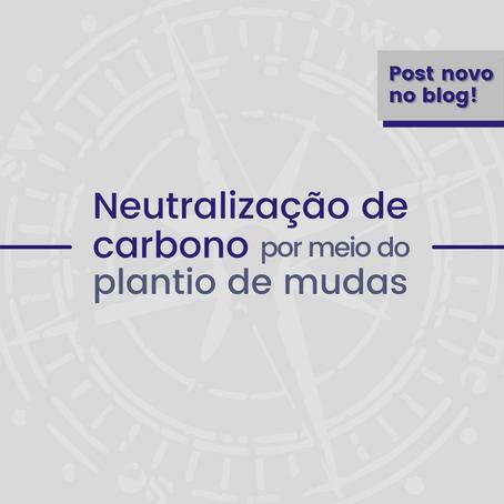 Neutralização de carbono por meio do plantio de mudas