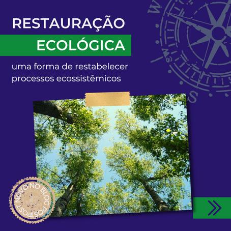 A restauração ecológica como forma de restabelecer processos ecossistêmicos
