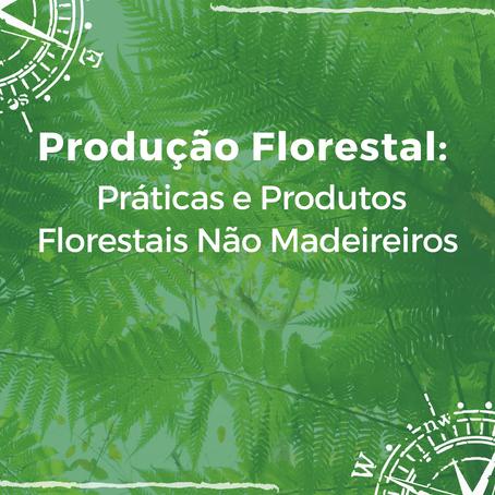 Produção Florestal: Práticas e produção de produtos florestais não madeireiros.