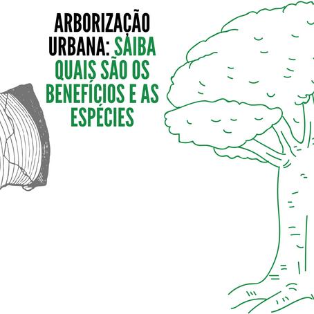 Arborização Urbana: Saiba quais são os benefícios e as espécies