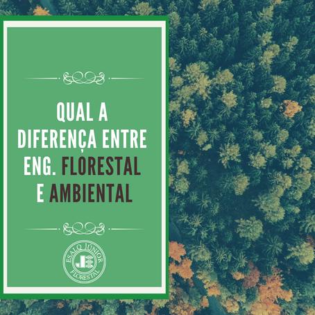 Qual a diferença entre Eng. Florestal e Eng. Ambiental?
