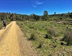 Etappe von Castilblanco nach Almadén