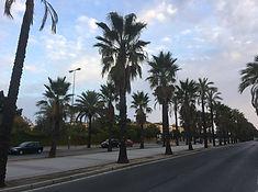 Die Avenida Andalucie in Jerez