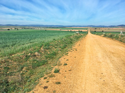 Die Via de la Plata vor Tábara
