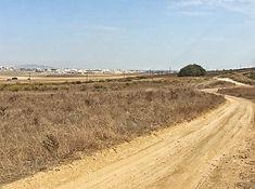 In der Ferne die Vororte von Jerez de la Frontera