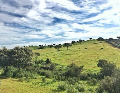 Castilblanco de los Arroyo