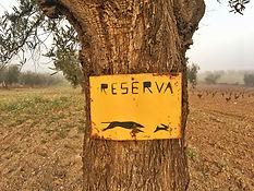 Jagdgebiet bei Villafranca de los Barros