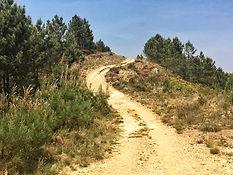 Etappe von Eappe von Campobecerros nach A Alberguería nach Campobecerros