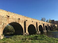 Morille - Salamanca