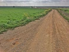 Via de la Plata vor Torremejía