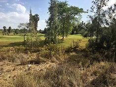 Unglaublich: ein Golfplatz in der Agro-Steppe.