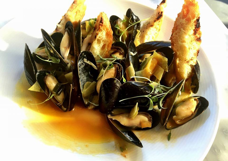 Brine Bangs Island Mussels Tomato Ginger Verbena Fresh Turmeric Cilantromicro